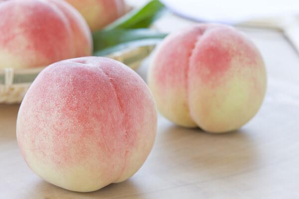 桃の予約販売を開始します!